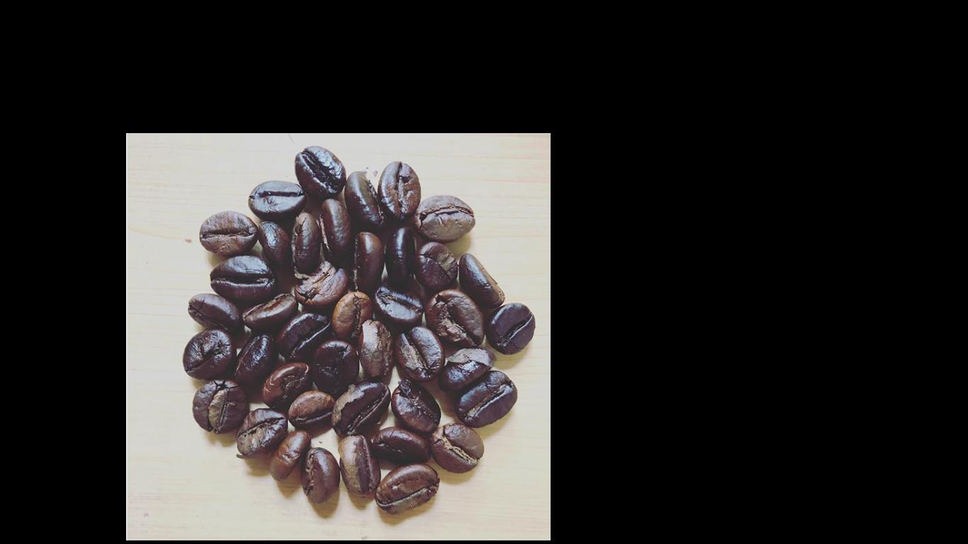 インドコーヒー豆